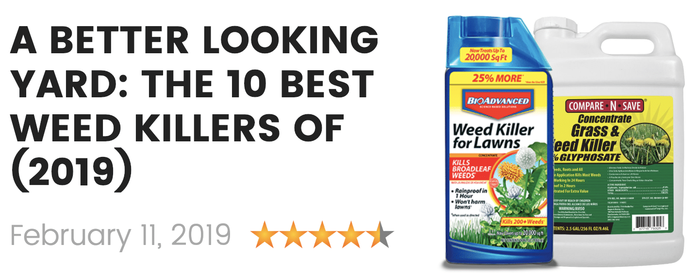 the best weed killers