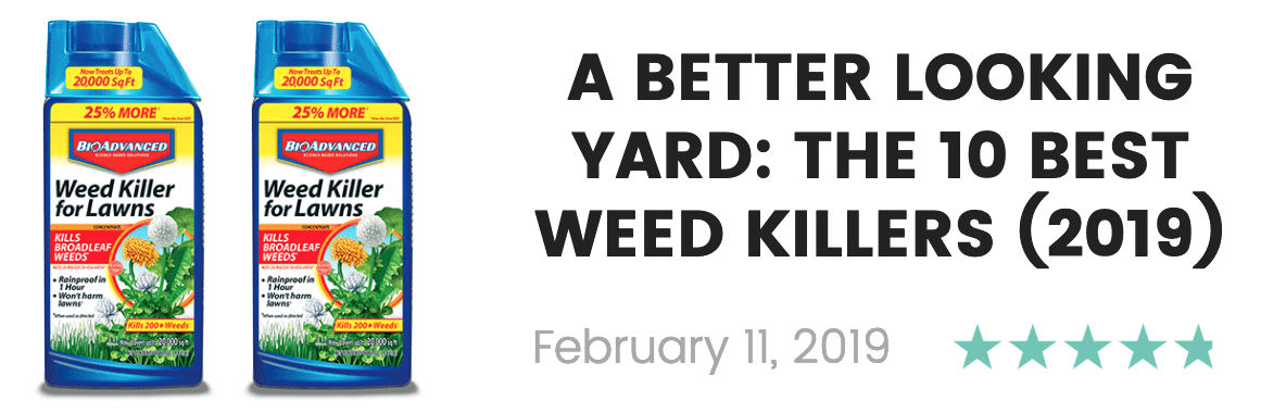 best weed killers in 2019