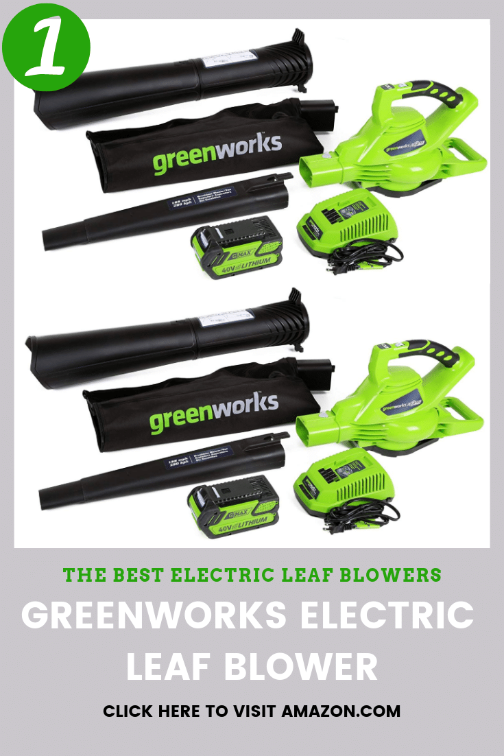the best to buy is Greenworks Cordless Electric Lead Blower